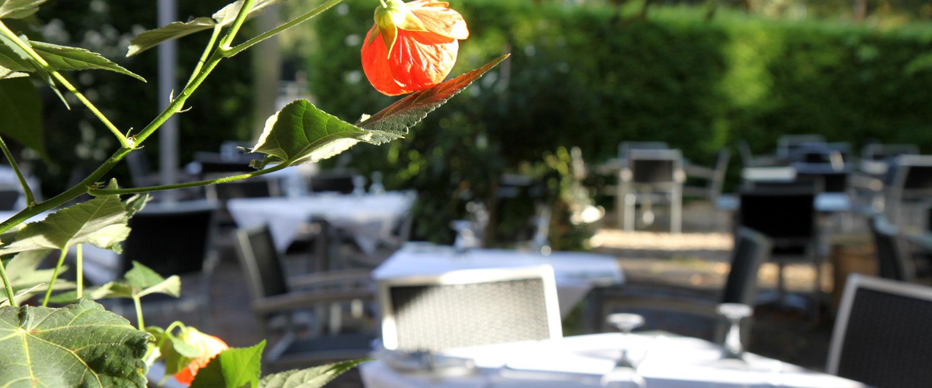 claudio-ristorante-001 ristorante - claudio ristorante 001 - Home